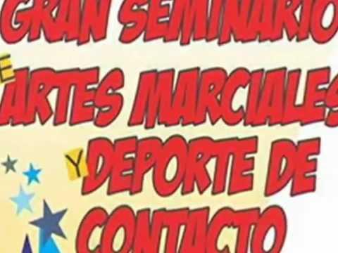 Gran Seminario De Artes Marciales Y Deporte De Contacto