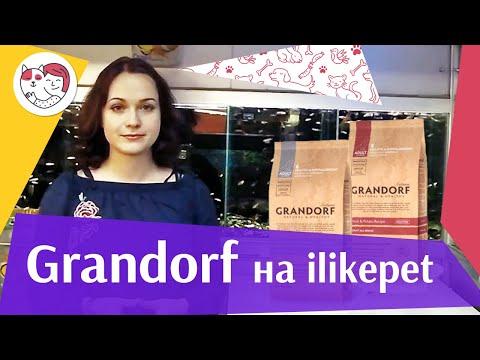 Grandorf на Ilikepet