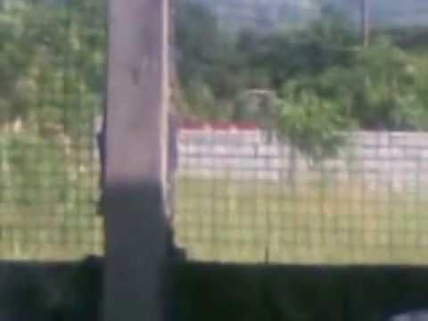 Sewage Truck. Castillejos, Zambales RP Environmental-Violations under Philippines RA9003