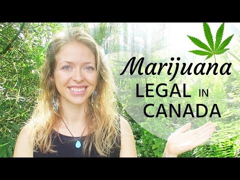 MARIJUANA IS LEGAL IN CANADA ✧ What This Means