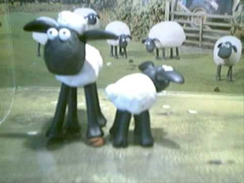 shaun the sheep stands in timmy's poo - youtube