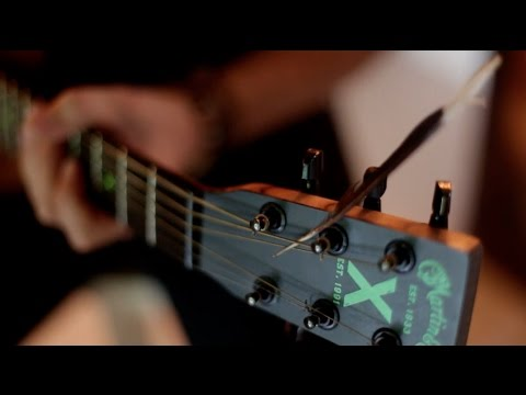 Blackbird -The Beatles  (Phil Stoodley)