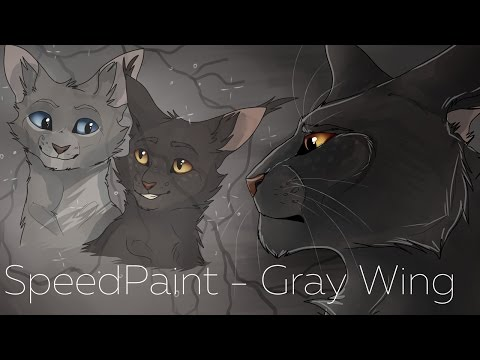 [WARRIORS] SpeedPaint - Gray Wing