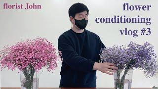 [SUB][꽃멍 vlog #3] 예쁜 꽃도 보고, 꽃에…