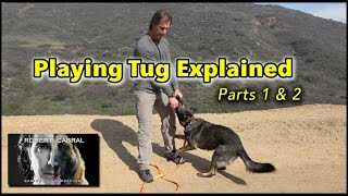 Tug Toy Basics #1 and #2 Explained