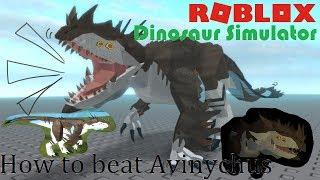 Roblox | Dinosaur Simulator : Tips on beating Avinychus!