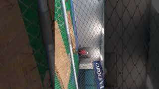 Baseball sessions