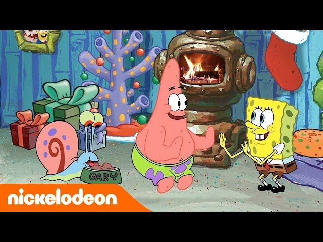 SpongeBob | SpongeBob haard in Bikinibroek | Nickelodeon Nederlands