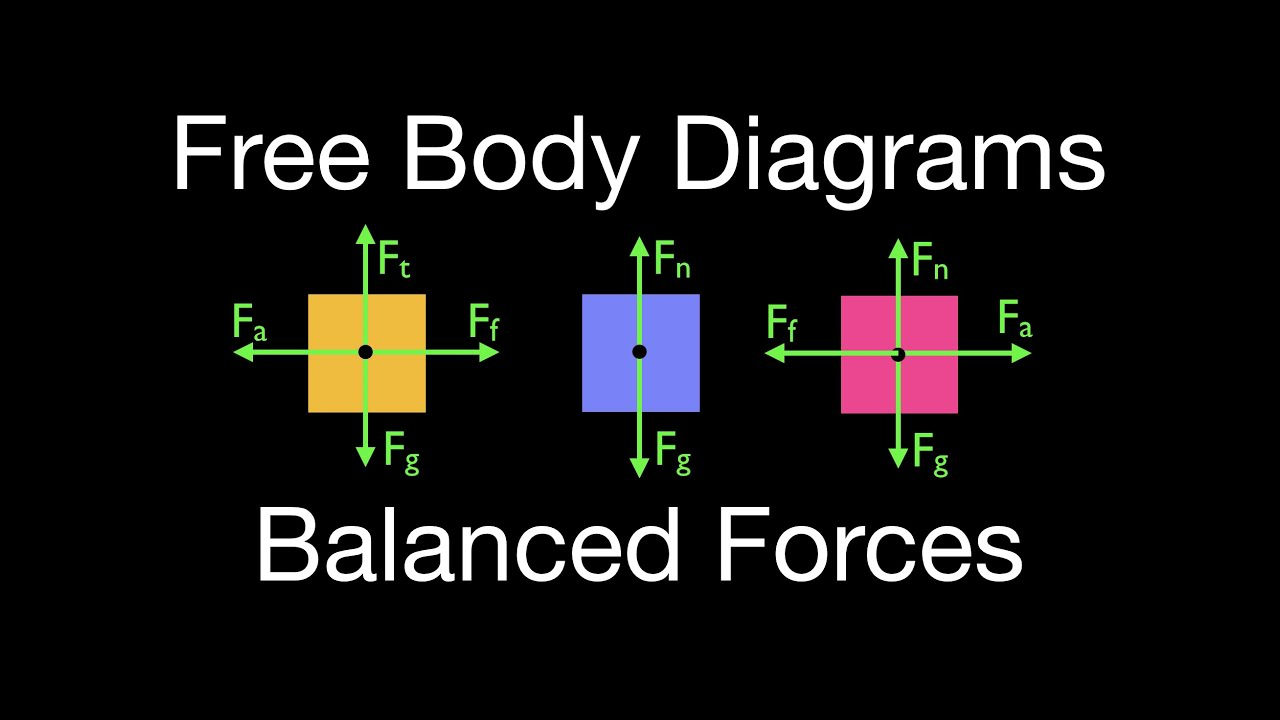 Newton's 2nd Law (16 of 21) Drawing Free Body Diagrams, Objects with  Balanced Forces