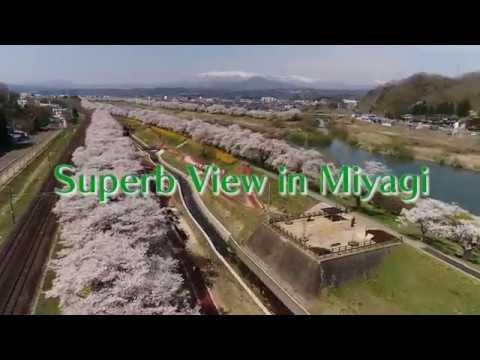 「絶景!ミヤギ / Superb View in Miyagi」ダイジェスト