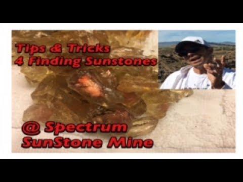 Piles of Sunstones found @ Spectrum in Plush Oregon (Mining America Ep26 ) June 2017