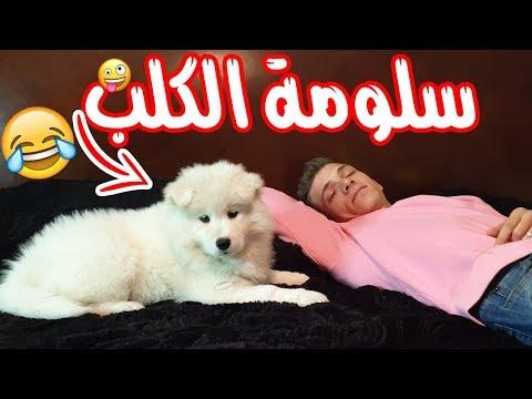 #نشاز 2019  - سلومة الكلب