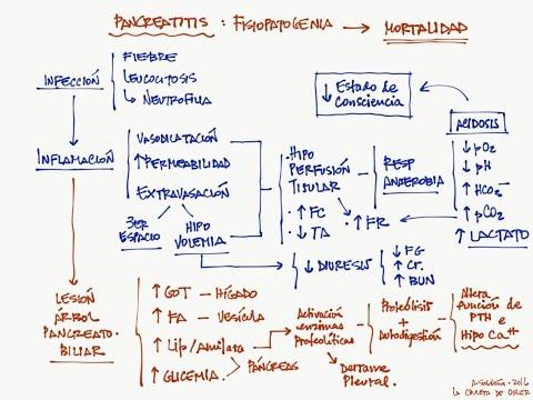 Pancreatitis, parte 1: Interpretación de la analítica y criterios de gravedad