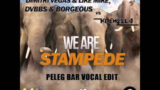 Dimitri Vegas & Like Mike vs. DVBBS & Borgeous Vs Krewella - We Are Stampede (Peleg Bar Vocal Edit)