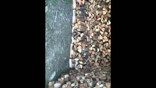 Firewood Stacking (ground Stacking) No Pallets