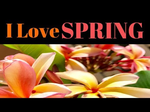 Tropical Garden strive on natural rain water-Relaxing& educational (Let's Explore My Garden)