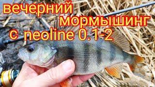 Вечерний мормышинг с neoline 0 1 2 5 видов рыб за час рыбалки