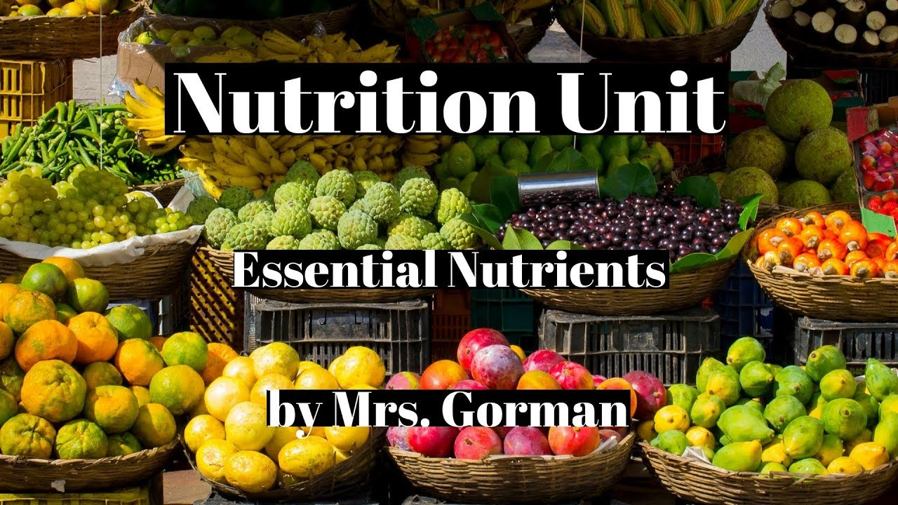 Nutrition Six Essential Nutrients