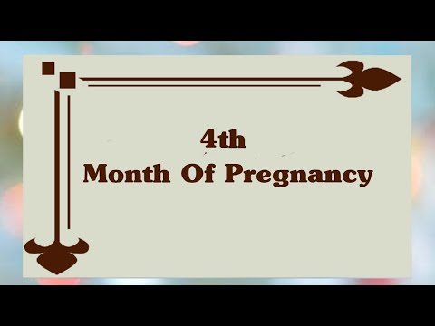 What to anticipate at 4 Several weeks Pregnant