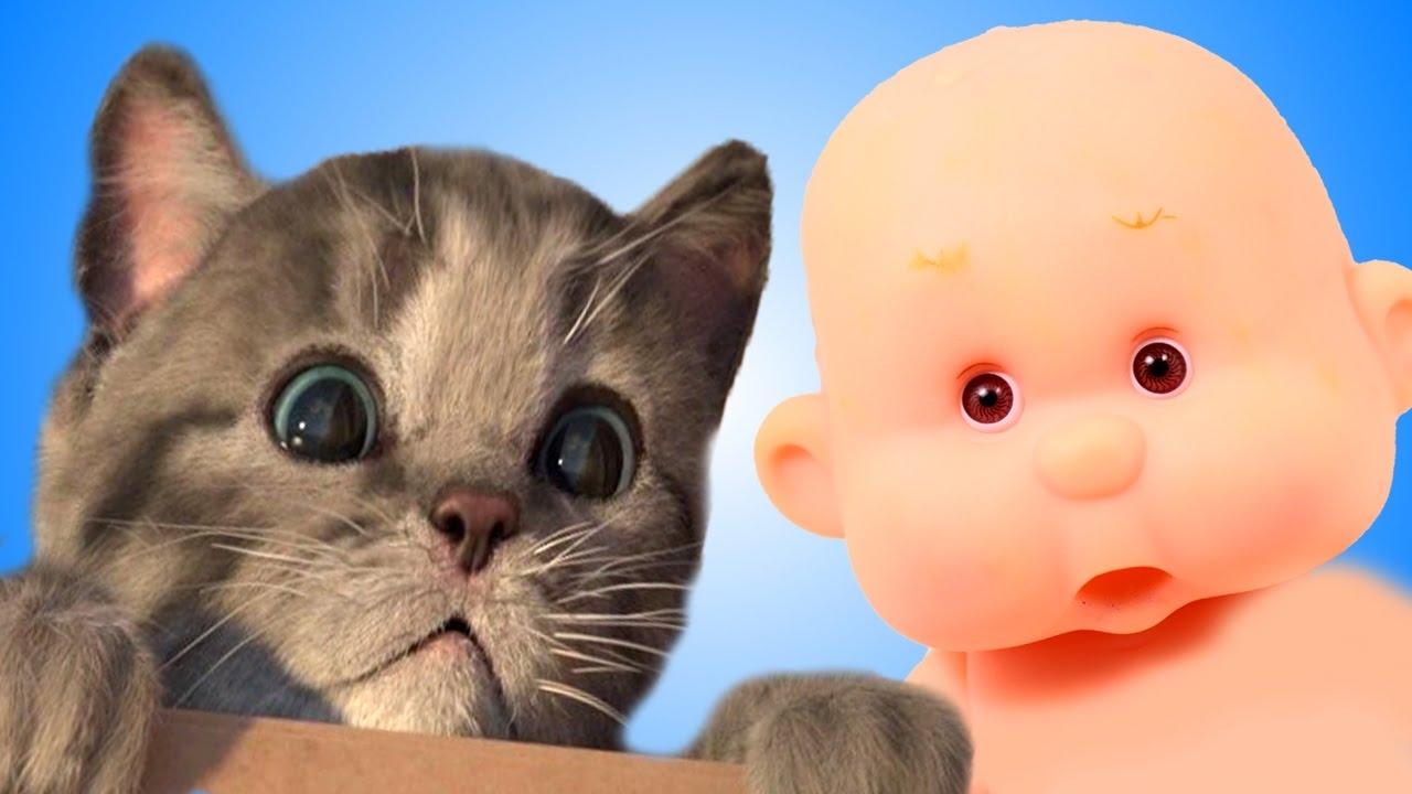 Кот и мишка мультик