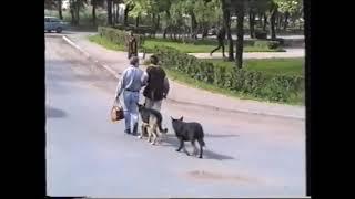 Петергоф в 1993 году.