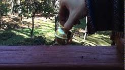 Large Sleigh Bell