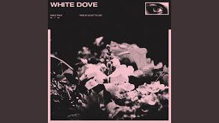 white dove mp3