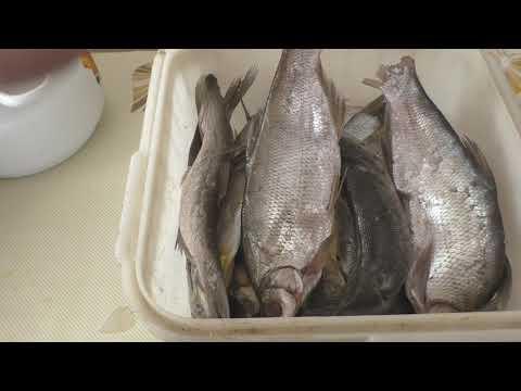 Вяленая рыба, Как правильно засолить, сколько вымачивать солёную рыбу, МоиРецепты#Плотва