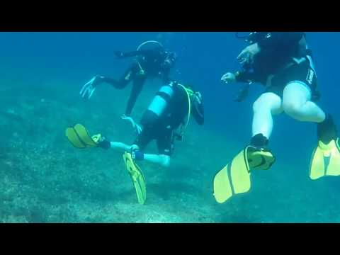 Scuba Diving in Malta, Paradise Bay - July 2017