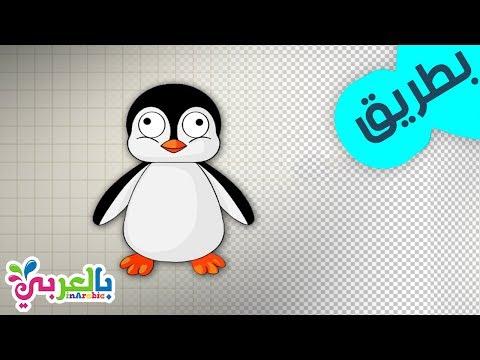 تعليم رسم بطريق بالخطوات تعليم الرسم للاطفال Drawing Penguin
