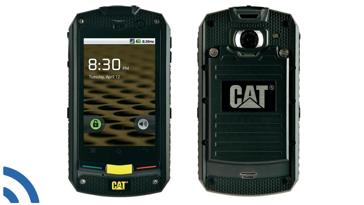 Картинки по запросу Cat b10