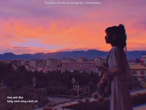 ( Vietsub) Sakura | Cover chậm | Bản Nhạc Nhật Bản Nổi Tiếng