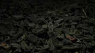 Auschwitz Shoe Exhibition