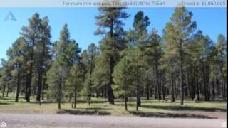 6287 E Prairie Edge, Williams, AZ 86046