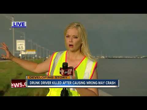 Wrong-way driver killed in multi-vehicle crash on Howard Frankland Bridge