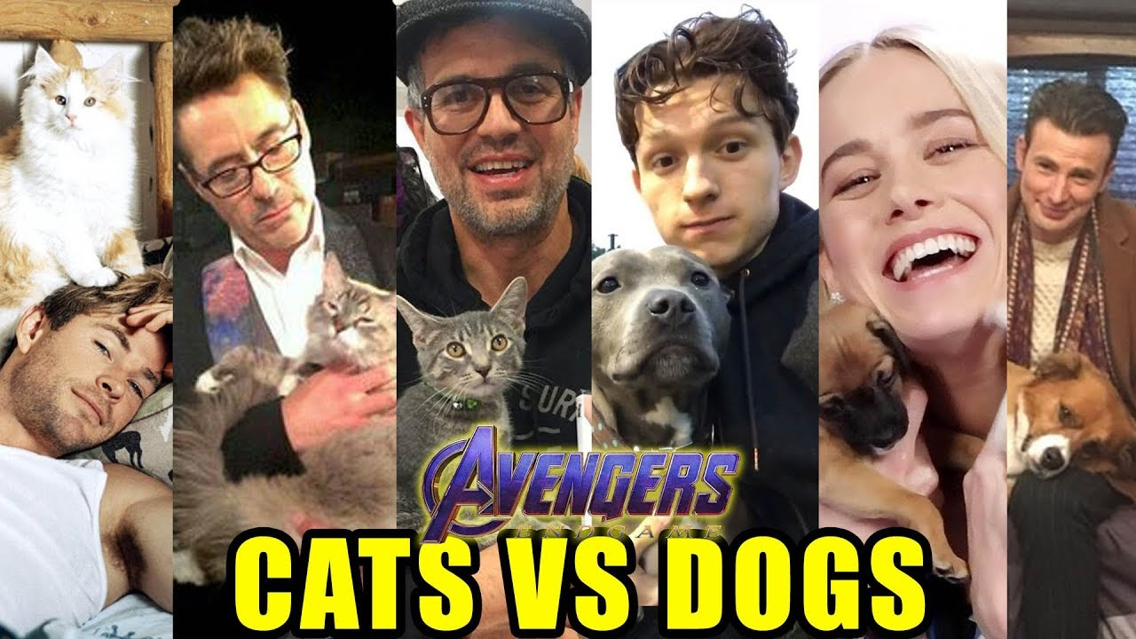 DOGS VS CATS: Avengers Endgame Cast Edition - Which Pets and Animals do they LOVE more?