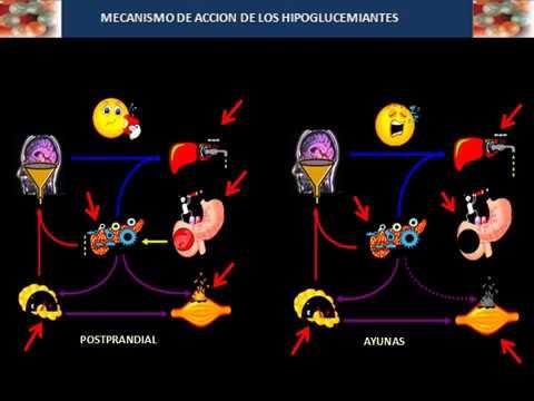 hipoglucemiantes para diabetes tipo 2