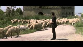 Le vent de la nuit Philippe Garrel (excerpt1-sheep scene)
