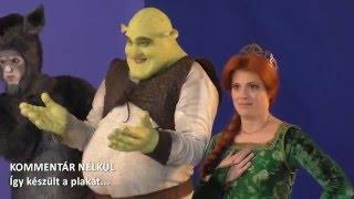 Shrek a Musical óriásplakát fotózás