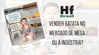 HF em Vídeo: Negociar batata no mercado in natura ou com a indústria?