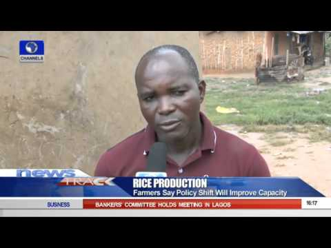 Farmers Says Policy Shift Will Improve Rice Production 04/10/15