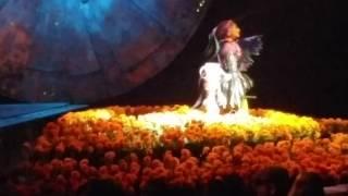 Cirque du Soleil Luzia Softbank Nao  Robots ナオロボット
