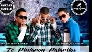 Yandar Y Yostin FT  Andy Ribera - Te Pintaron Pajaritos (Bruno Contino Radio Remix)
