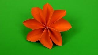 Easy 8 Petal Flower origami