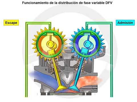 Distribución variable en fase DFV (3/6)