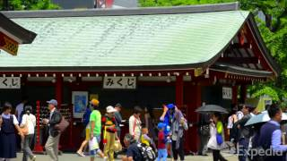 Tokyo Vacation Travel Guide - Expedia