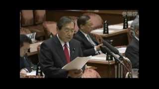 2013/04/24 参議院 予算委員会 民主党 加賀谷健の質疑