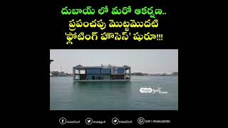 The world\'s first \'floating\' houses launched