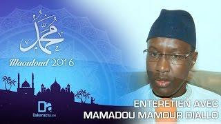 Baixar Gamou 2016 : Entretien avec Mamadou Diallo Directeur des domaines