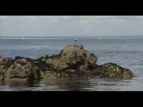 Archipel des Glenansde YouTube · Durée:  1 minutes 52 secondes